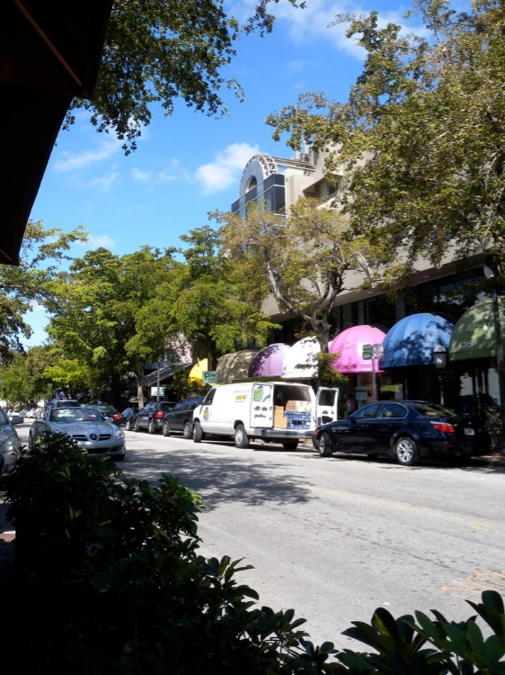 Coconut-Grove-1
